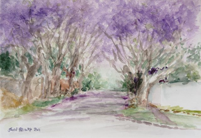 Watercolour sketch of Jacarandas flowering