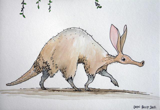 Cartoon sketch of an antbear