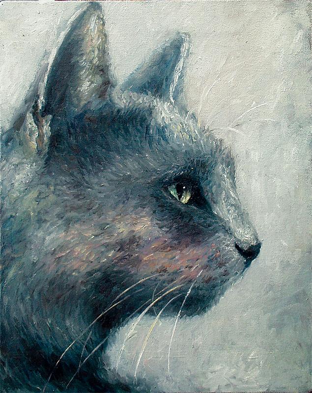 A grey domestic cat.