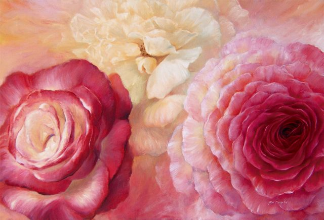 Flowers - Close up of red, pink and white roses with rich warm colourful background.