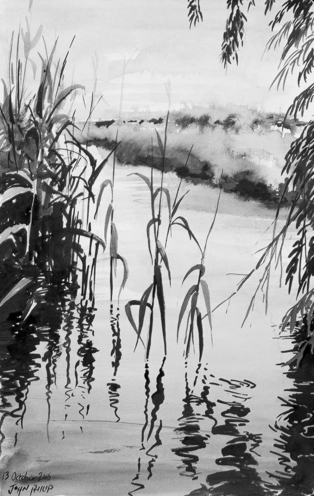 River with reeds done in Ink