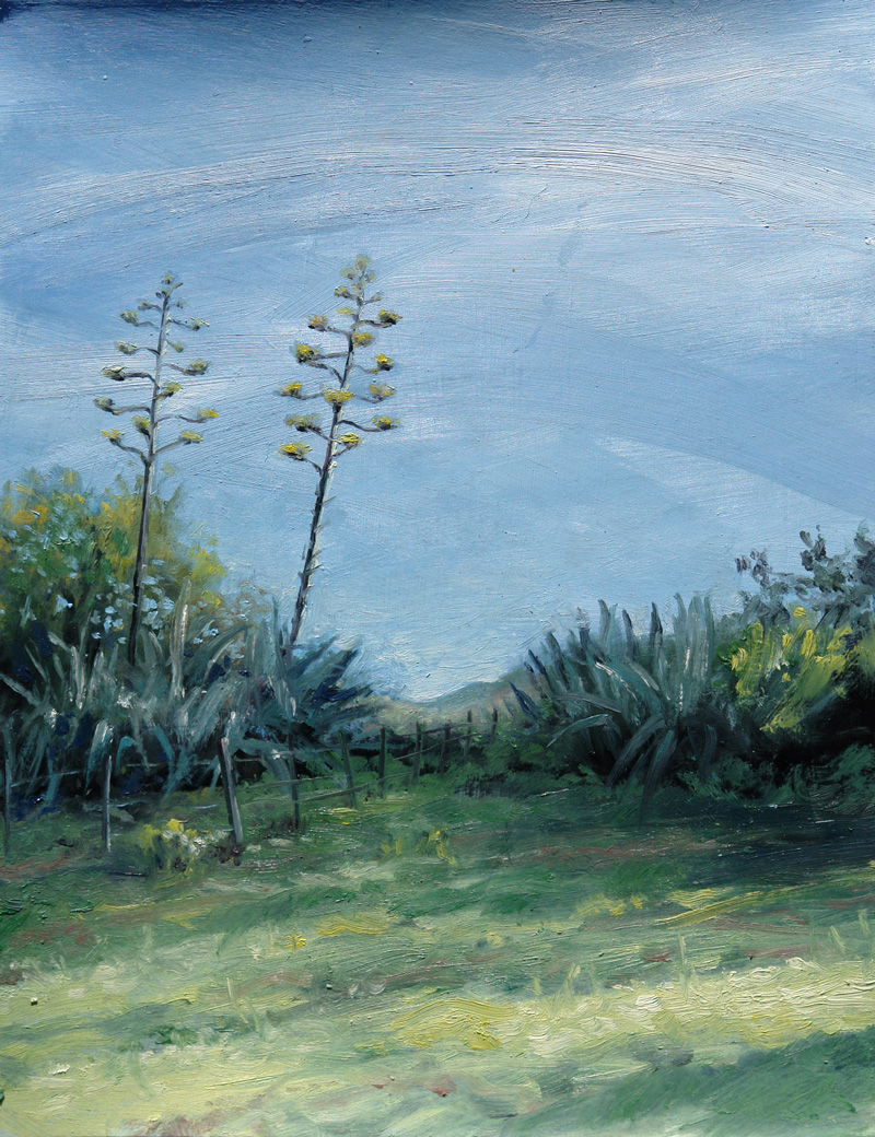 Oil painting of agave aloes