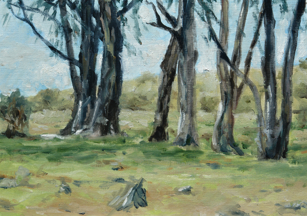 Oil painting of some gum trees