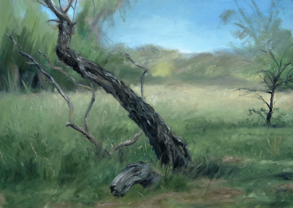 Plein Air painting of a dead tree stump of willow
