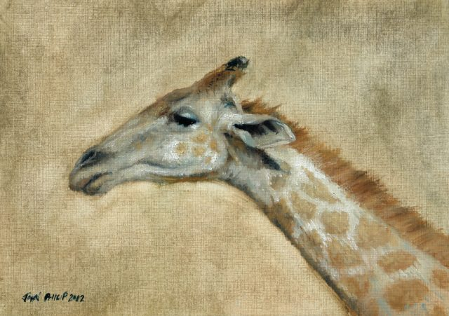 Oil on canvas paper of a Giraffe head
