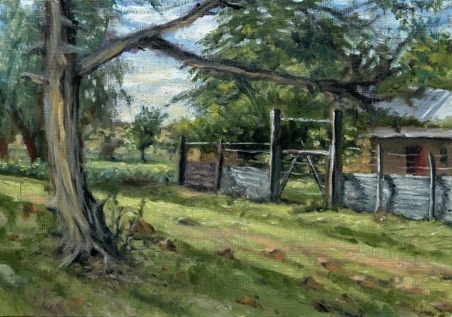 Plein Air oil painting of an old cyprus tree and farmyard gate.