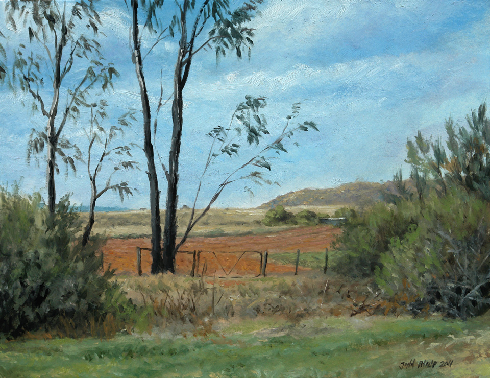 Oil Painting of empty land, gate, and bluegums - young Eucalyptus trees