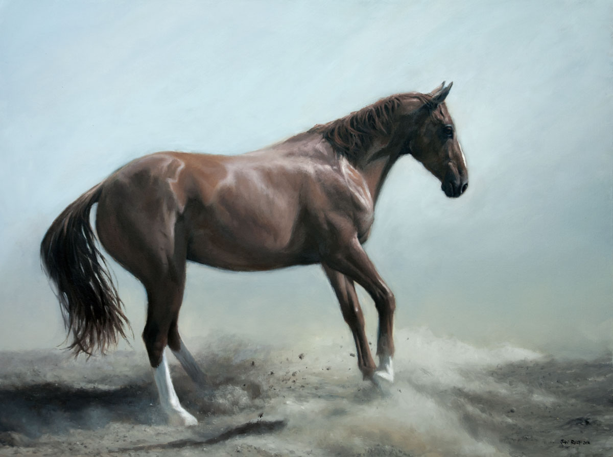 Oil Painting of a horse named Appolo