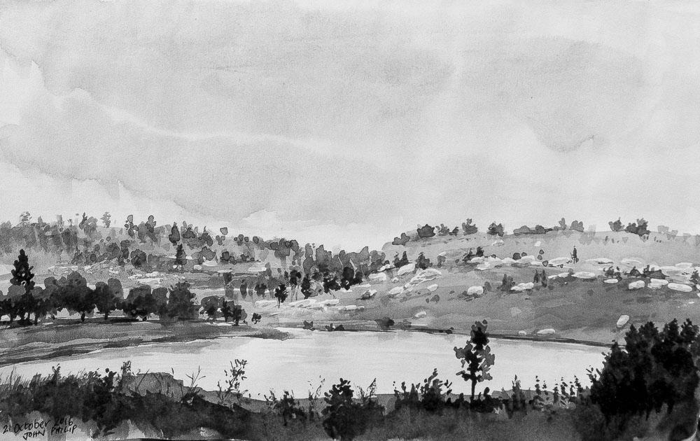 Landscape Ink