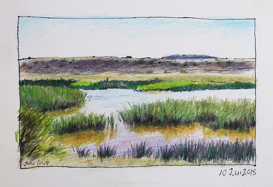 Drawing of a farm dam with reeds and hills in the background.