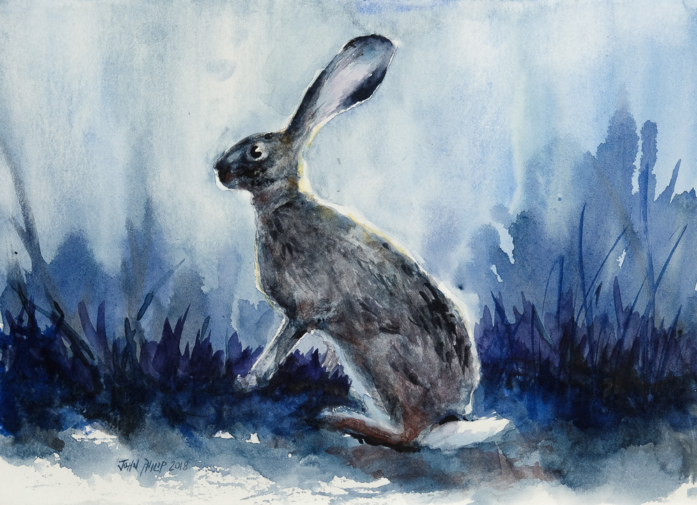 Water colour painting of a cape hare in indigo