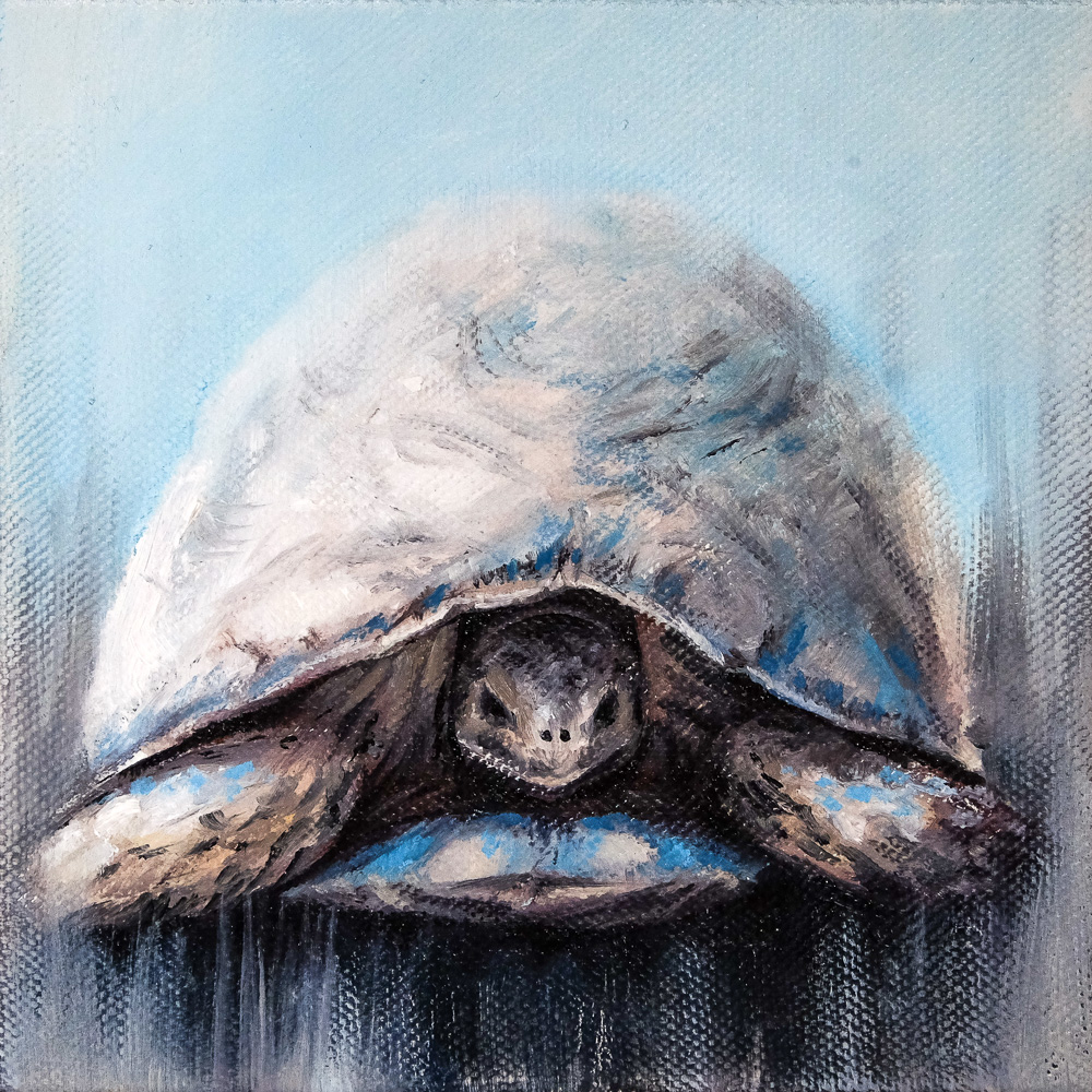 Oil Painting of a Blue Tortoise