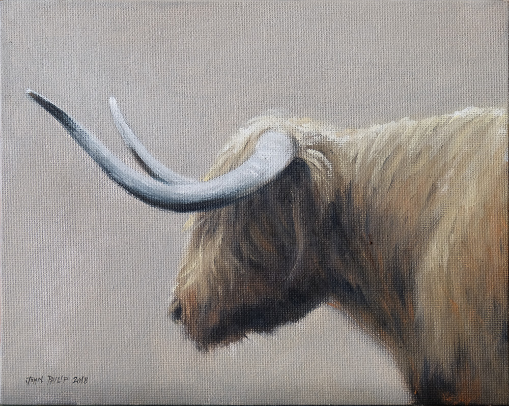 Oil Painting of a Cow from Scotland