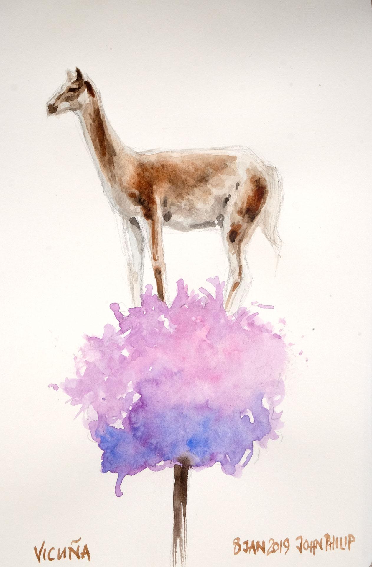 Vicuna ( Similar to Llama and Alpaca )